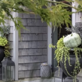 Monochromatic Heirloom and Cinderella Pumpkin Porch Design